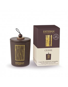 Esteban Classic scented candle Triptyque Cedre