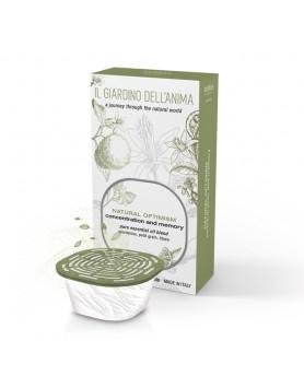 Mr & Mrs capsule Giardinio Fragrance Natural Optimism